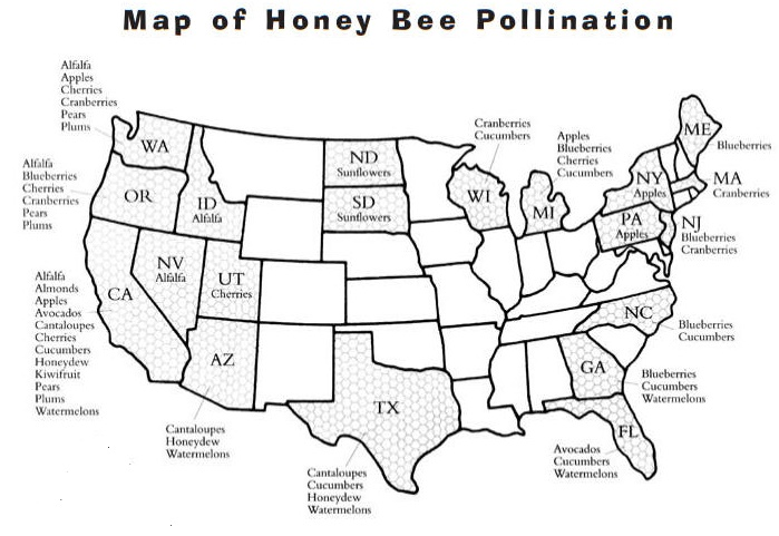 Honey Bee Pollination Map